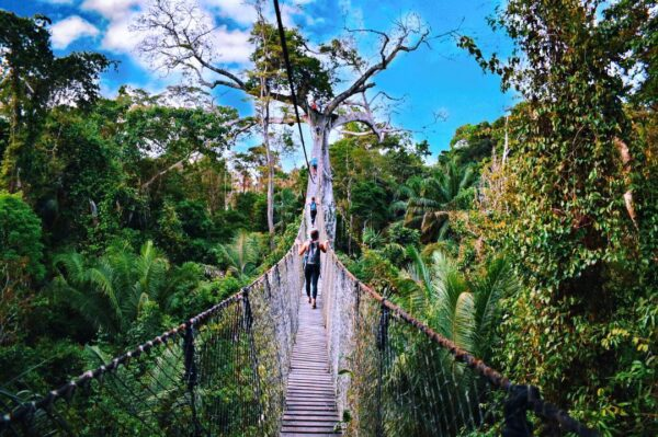 tours in the amazon